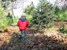 The family at A Life Sustained visited a Christmas tree farm.